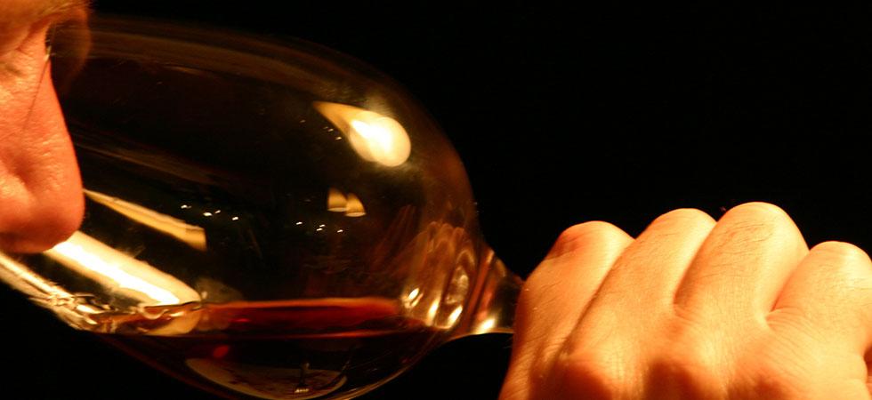 Wine Tour & Wine Tasting - Montemercurio Cantina in Montepulciano